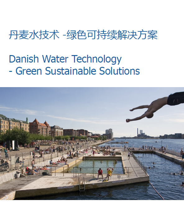 How can you benefit from co-operation with Danish water companies?